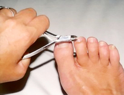 Nail / Toe-Nail Cutting Service